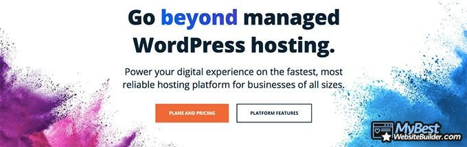 Best web hosting: WP Engine.